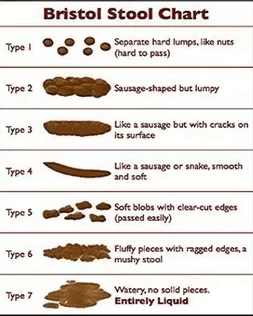 What Does The Shape Of My Poop Mean?
