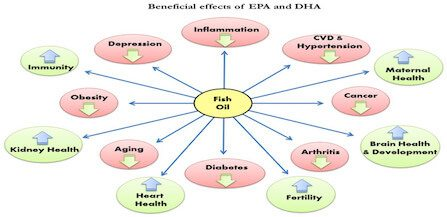What Are The Benefits Of Fish Oil Omega 3?